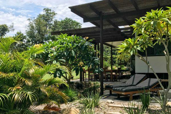 Sun Lounges & Garden