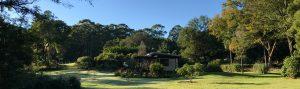 The Lily Pad at Byron