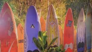 Surf Mural in Retreat Pavilion