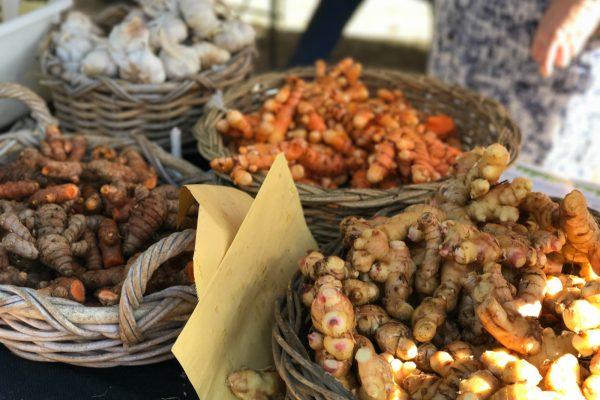 Turmeric, galangal & ginger